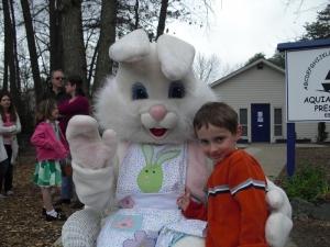the_bunny