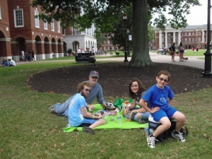 b-picnic