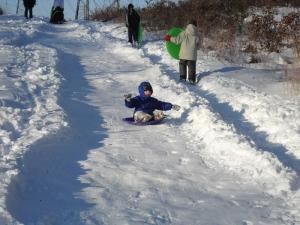 zeke_sledding